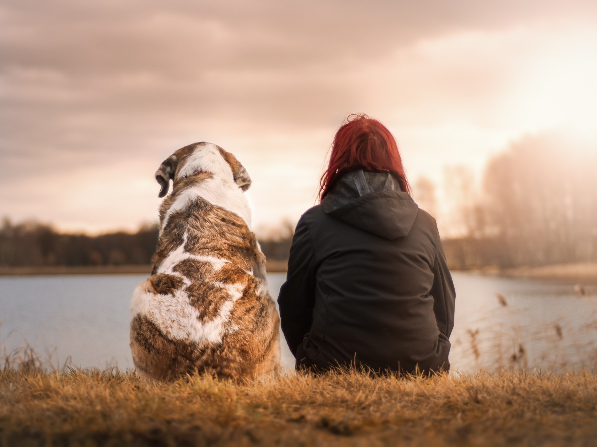 Chien et petsitter assis regardant un lac