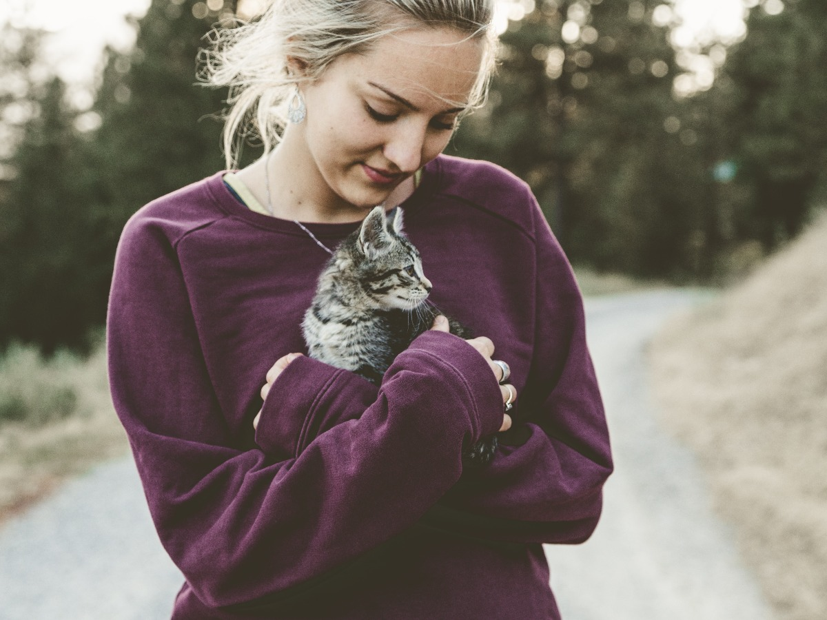 Chat dans les bras d'un petsitter